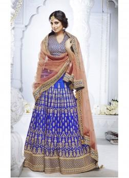 Blue Net Designer Lehenga Choli
