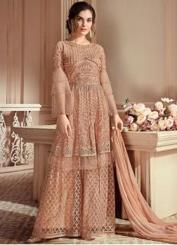 Net Designer Pakistani Suit in Beige