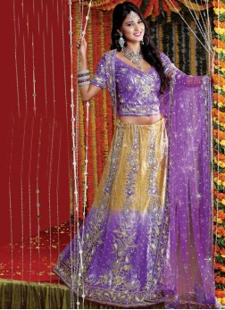 Precious Purple Patch Border Net Handwork Lehenga Choli