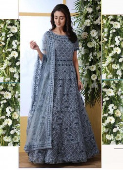 Snazzy Thread Work Grey Net Designer Gown